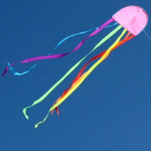 Jellyfish Australian made kids kite from Windspeed kites to toy shops and hobby shops wholesale
