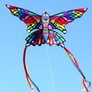 Rainbow Butterfly from Windspeed Kites, Australia's wholesale kite supplier
