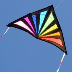 Sunrise Delta single string kite from Windspeed Kites, Australian wholesale kite supplier