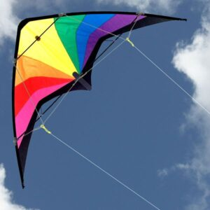 Prism Sports kite for Toy and Hobby stores from Australias leading kite wholesaler