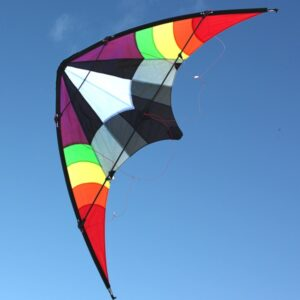 Ikon dual control kite wholesale from windspeed kites