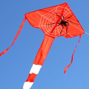 Spider kite for kids from Australias wholesale kite supplier, Windspeed Kites