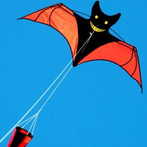bat kite with drogue from Australian kiter supplier to toy and hobby stores