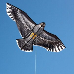 Large Eagle kite available in toy and hobby stores supplied by Windspeed Kites