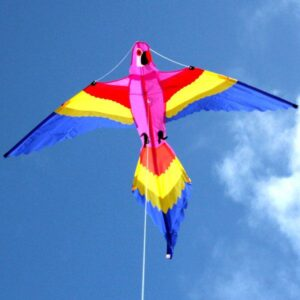 Lorikeet Bird kite wholesale supply from Windspeed Kites